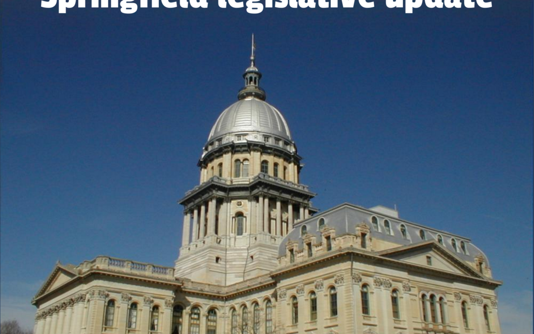 Urge your IL senator to support bargaining rights and an elected, representative school board